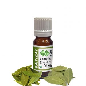 Bayleaf Essential Oil Organic