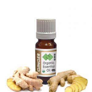Ginger Essential Oil Organic